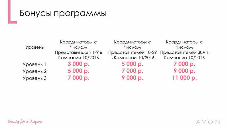 "Программа для Координаторов ""На волне приключений"". Кампании 11-12/2016"