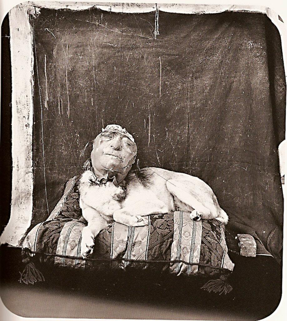 1994. Собака на подушке