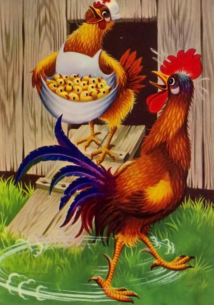 Курица открытки