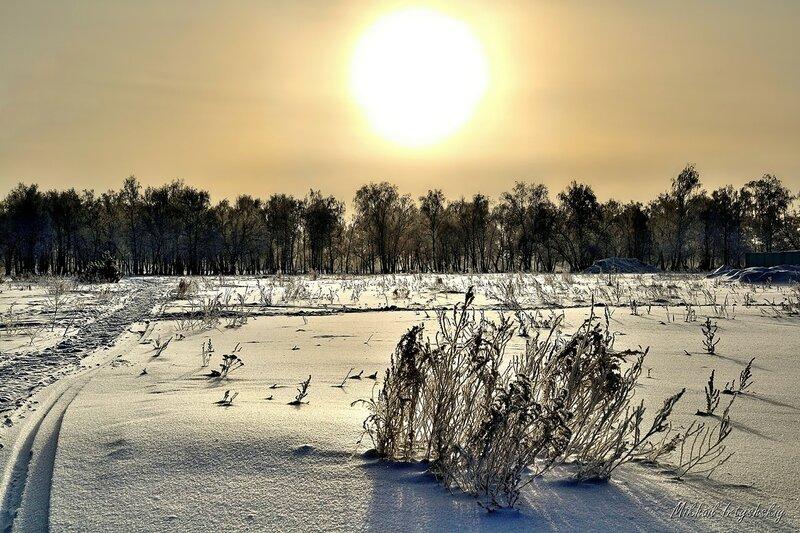 Яркое солнце февраля
