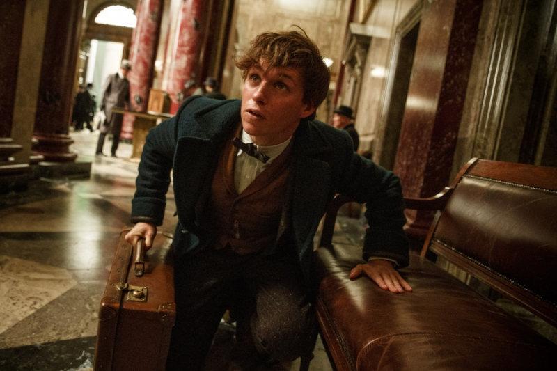 Роулинг исключила, что роман будет посвящен приключениям Ньюта Скаламандера — главного героя фил