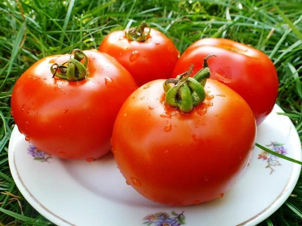 Как сохранить помидоры свежими до Нового года! (3 фото)