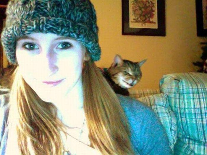 этот кот чего-то замышляет