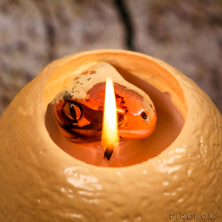 Dinosaur Egg Candle - This candle will reveal a cute baby velociraptor when melting