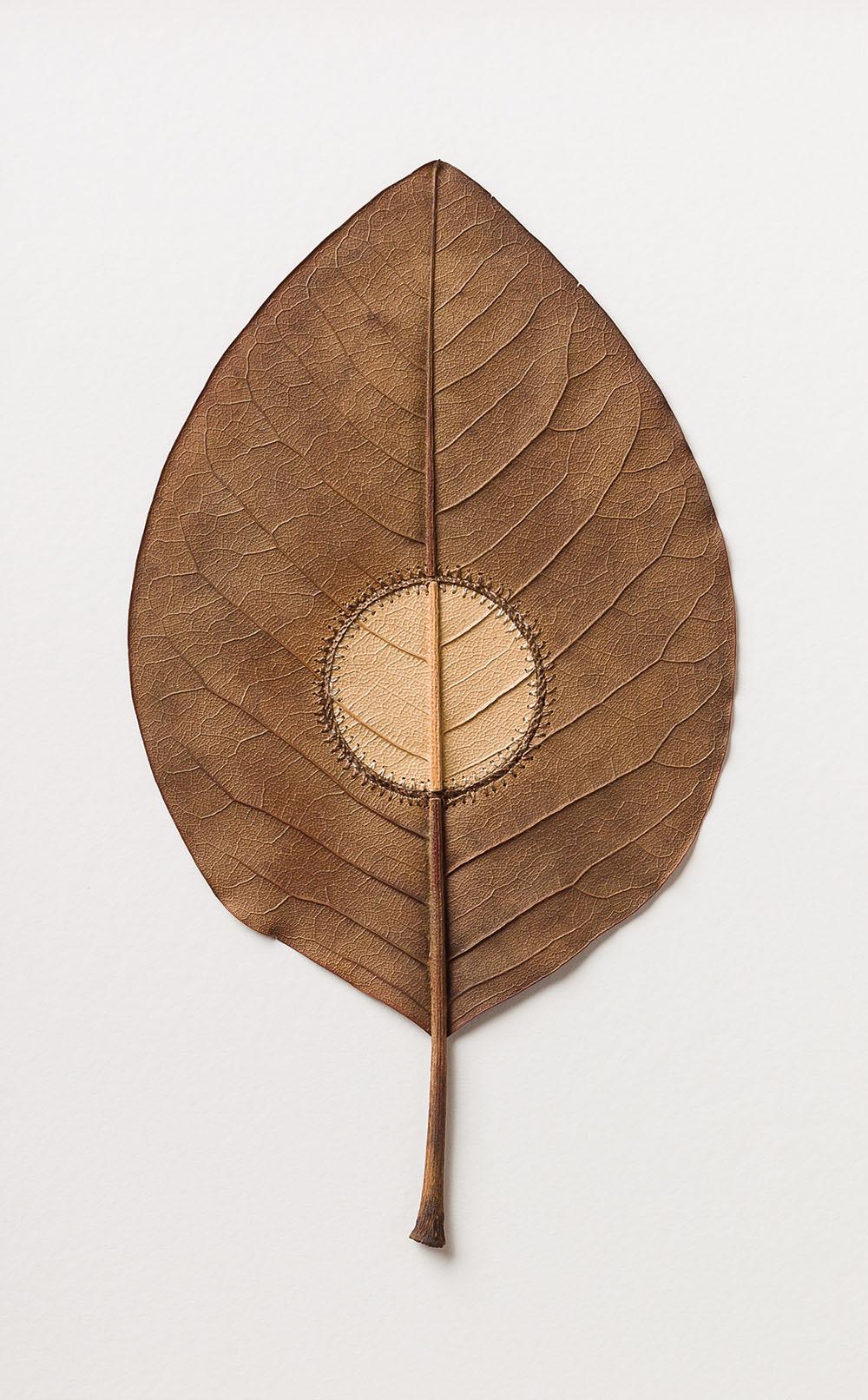 Inner Circle. 35.8 H x 25.8 W cm. Magnolia leaves, cotton yarn.
