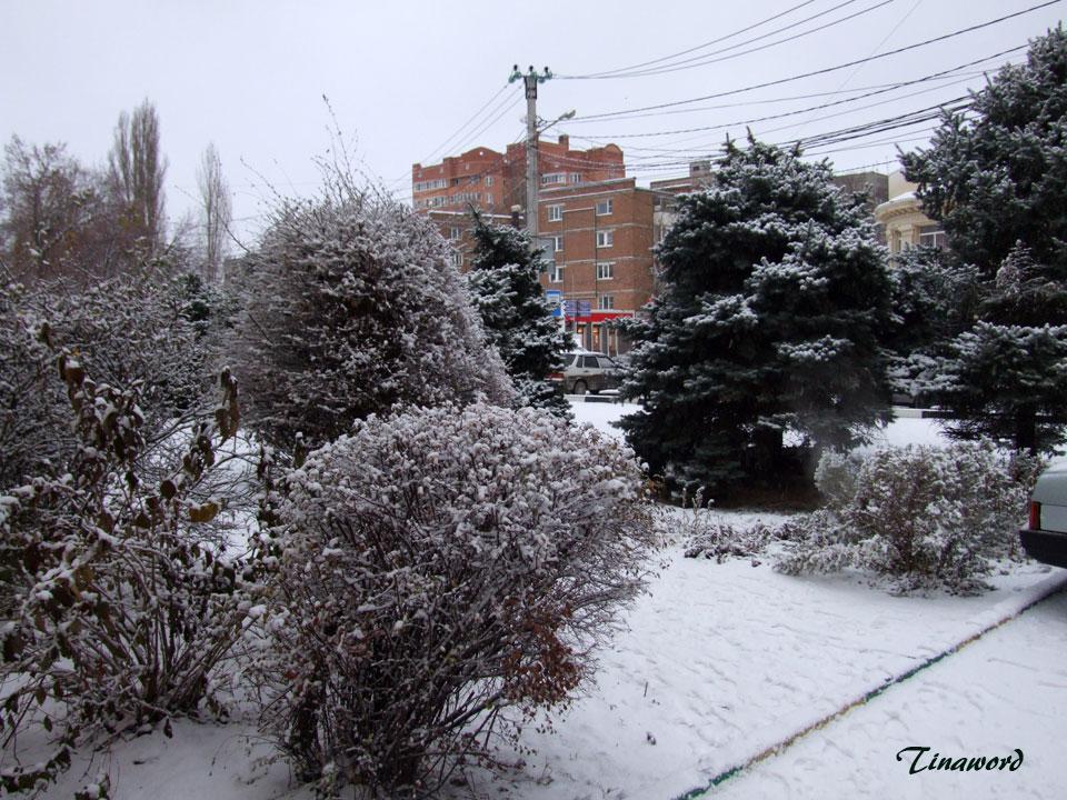 Вот-и-снег-3.jpg