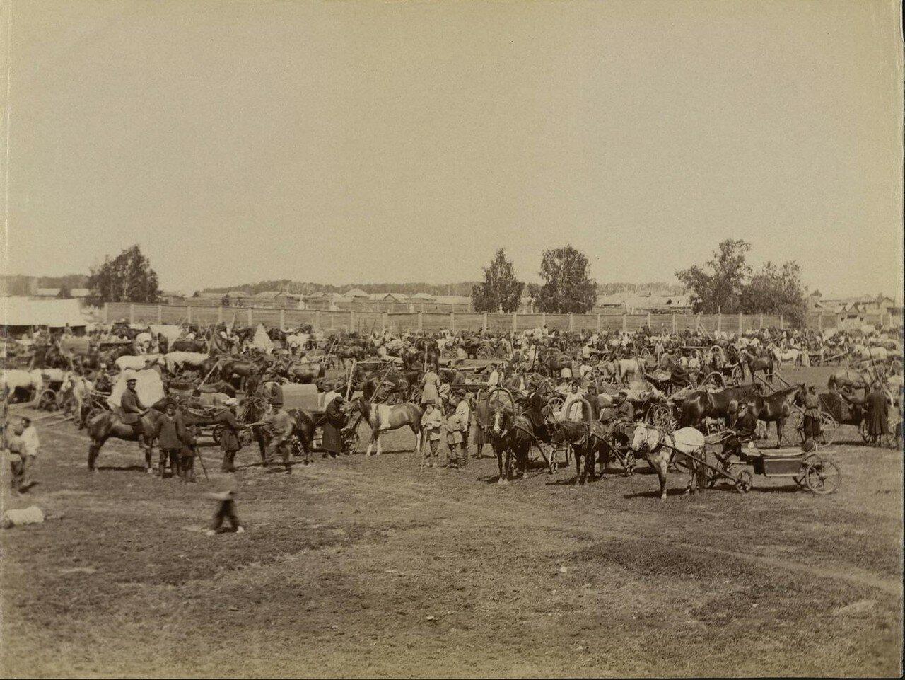 Курган. Рынок лошадей