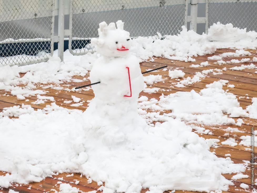 закрытие навигации снежный круиз