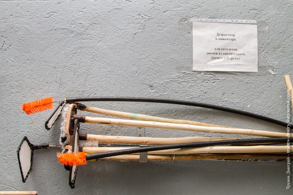 23. Система отопления осуществляется автоматической котельной, работающей на дизельном топливе.