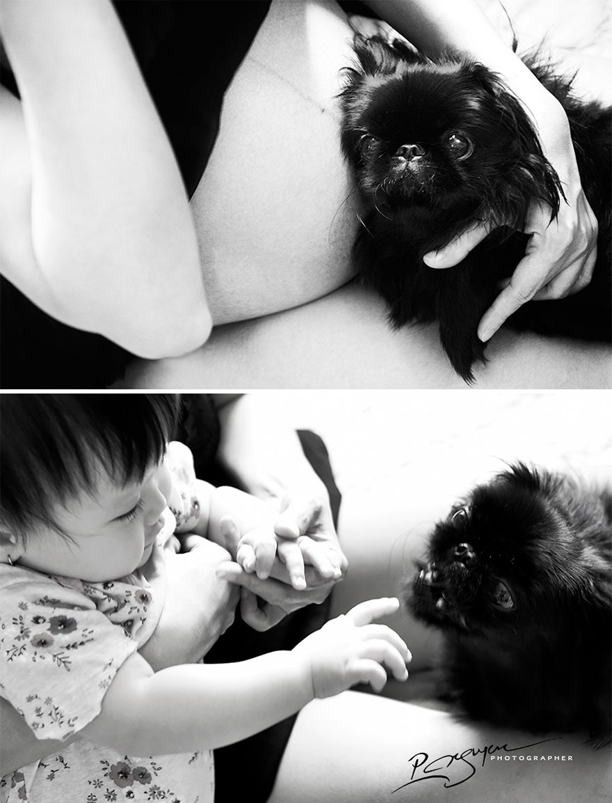 «Во время беременности моя жена позволяла питомцам и дочери взаимодействовать друг с другом, чтобы н