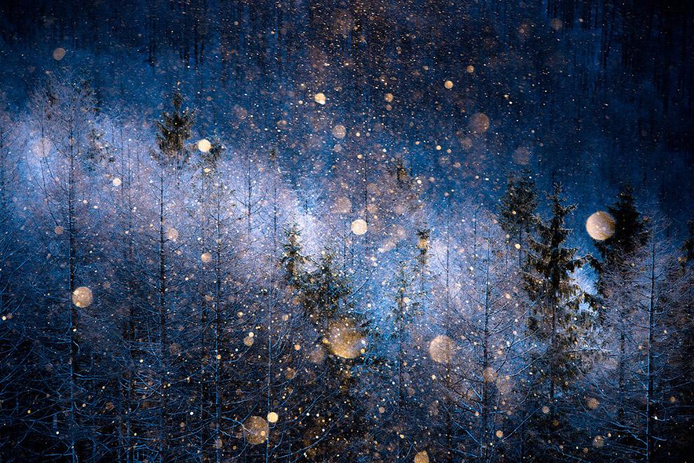 32. Странник в горах Румынии. (Фото Sorin Rechitan   Sony World Photography Awards 2017):