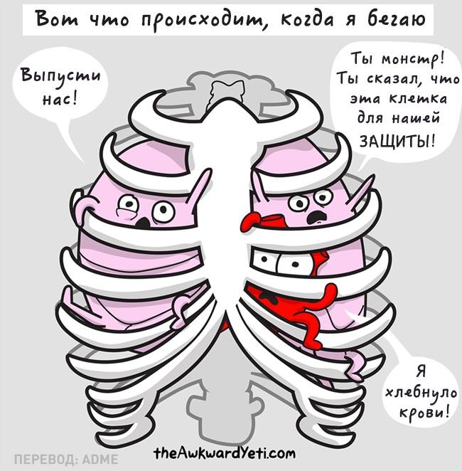 Еслибы наши внутренние органы умели разговаривать