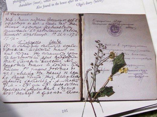 Grand Duchess Olga Nikolaevna of Russia. Diary