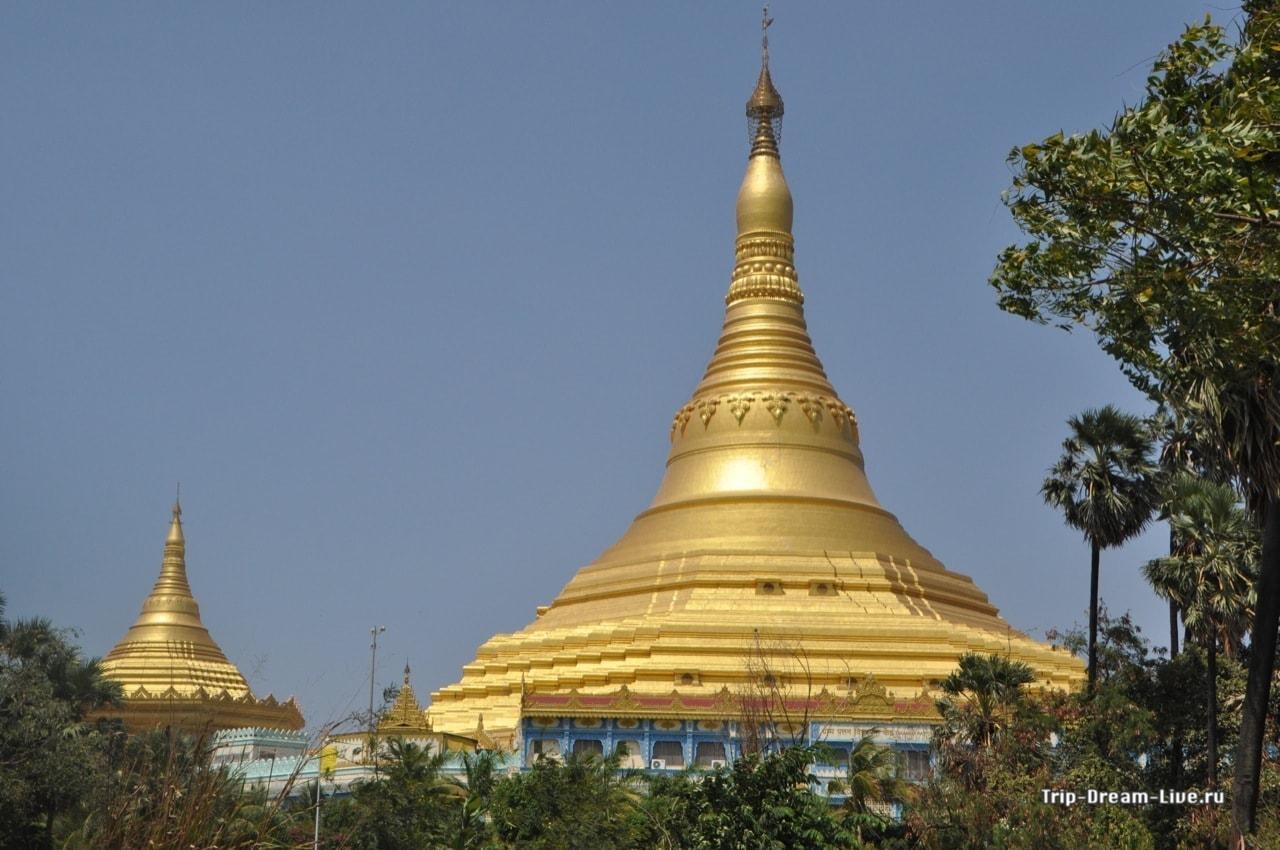 Пагода у жопе