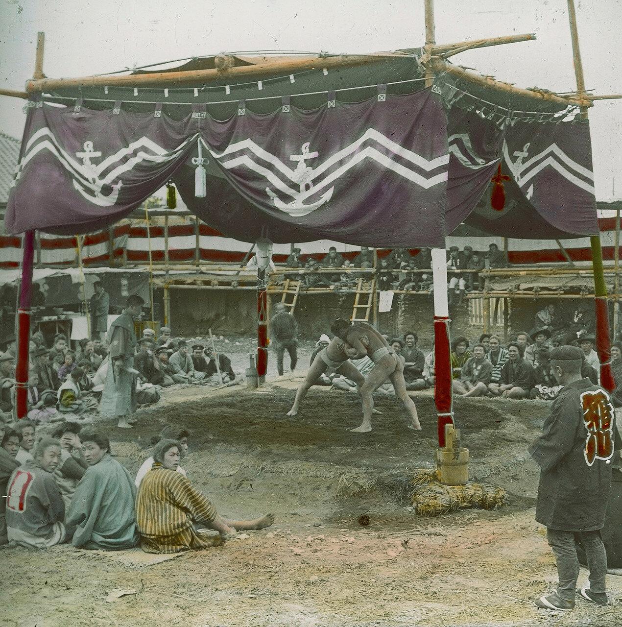 Состязание борцов сумо