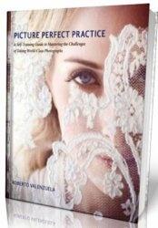 Книга Picture Perfect Practice