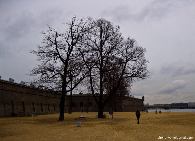 Петропавловская крепость. Прямо посреди пляжа растут деревья.