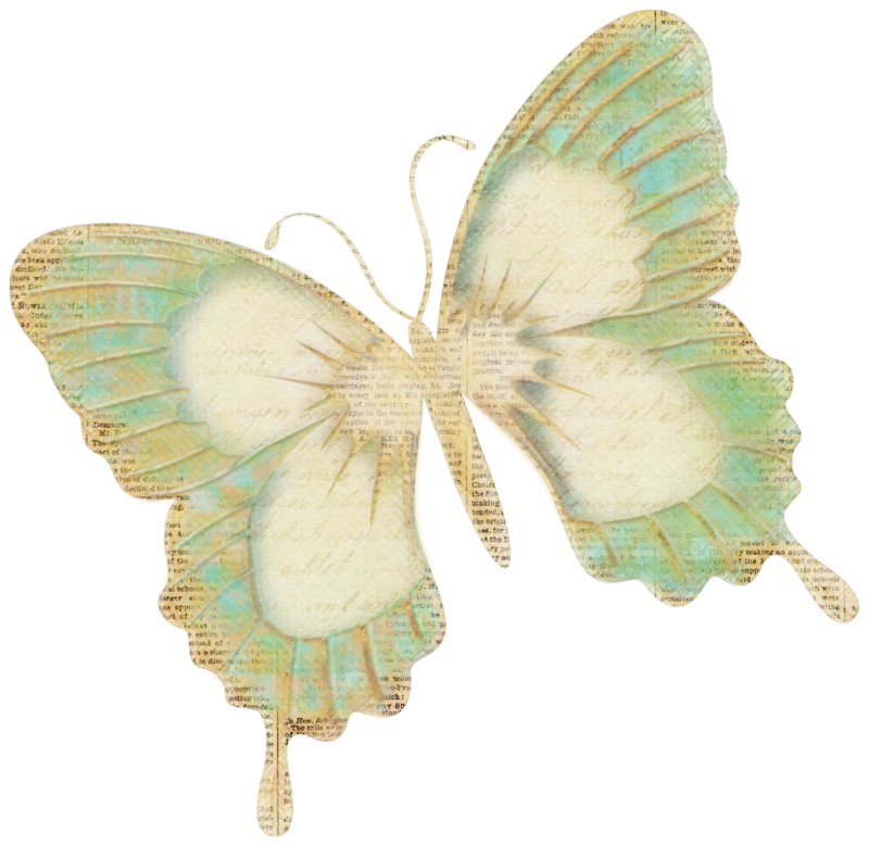 vjs-cherishtheday-butterfly-01.png