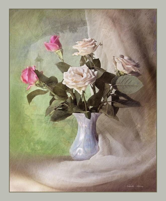Розы у окна