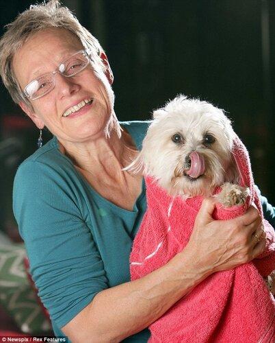Чудесное спасение собачки