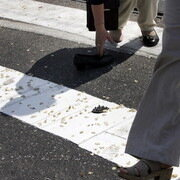 Собака потянула пешехода под микроавтобус