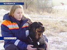 В поиске людей ставка делается на собаку