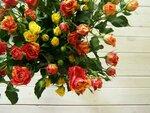 розы.JPG