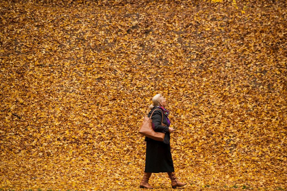 14. Пейзажи Словении, 1 октября 2017. (Фото Srdjan Zivulovic):