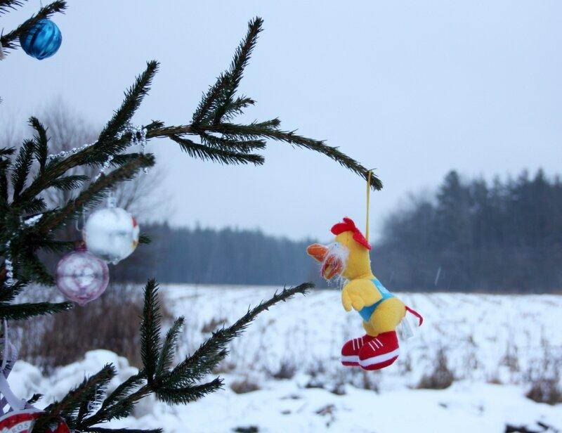 канун рождества, елка на улице, дождь...