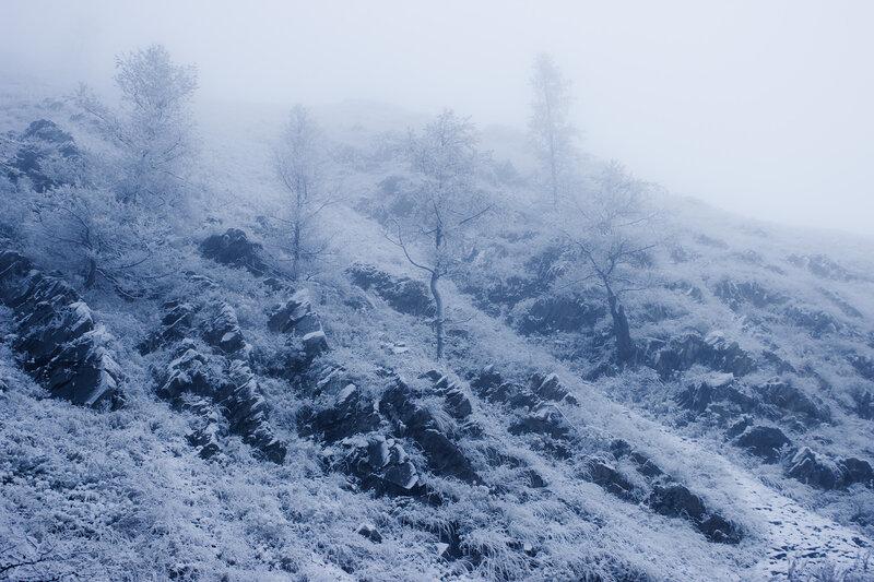 ущелье Верхней Теректы в снег и туман