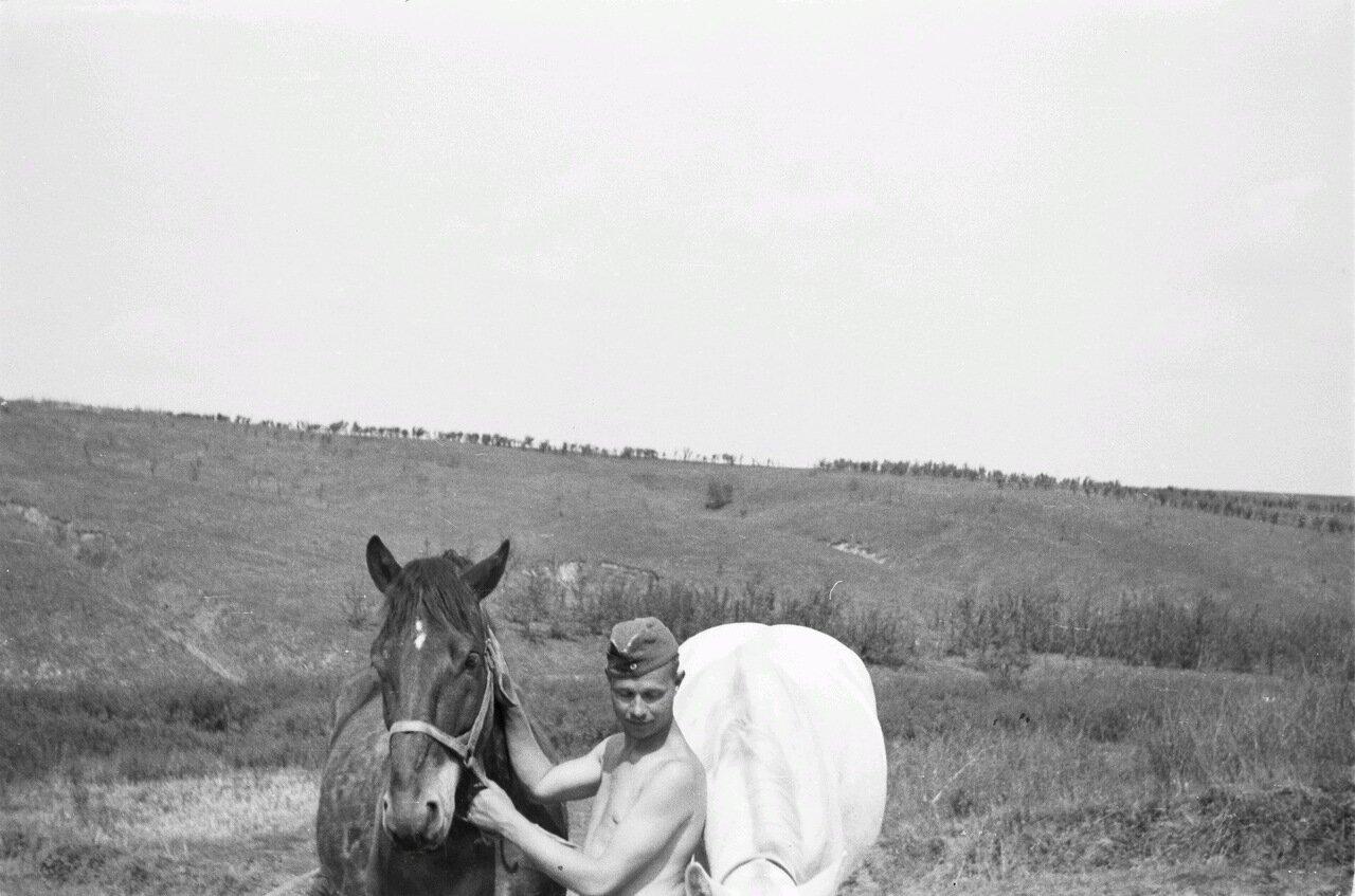 Белгородская область. Солдат с лошадью
