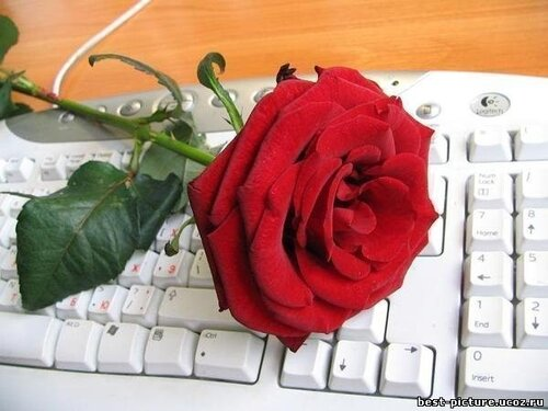 ШРК на Твиттер, Фейсбук, Гугл+ и Whosay / SRK on Twitter, Facebook, Google+ and Whosay-5 - Страница 4 0_4e1e5_39f55472_L