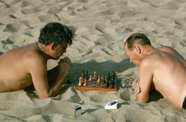 Chess Players on Silver Pine Forest Beach
