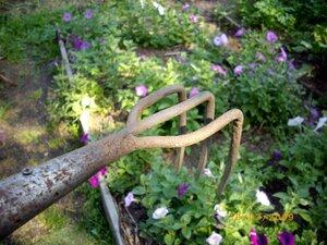 садовый инвентарь фото