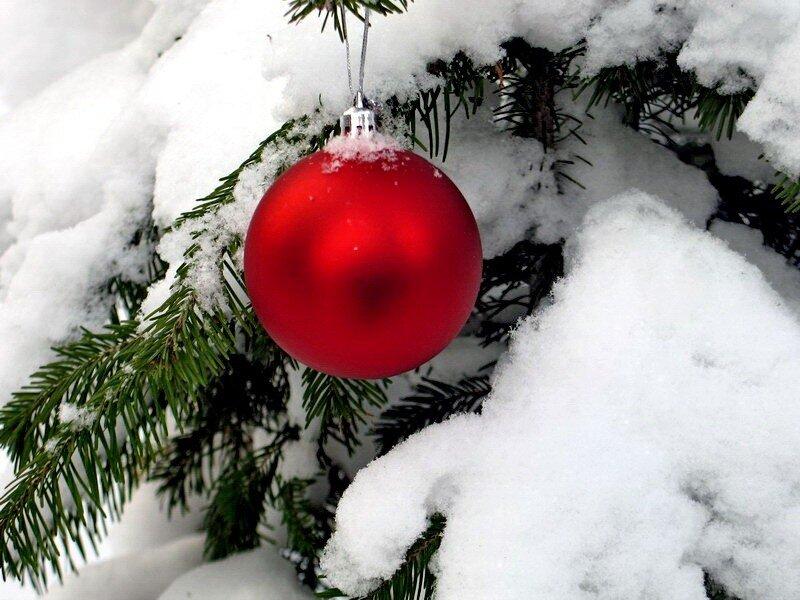 Скоро Новый Год. С наступающим!!!! ЯРУШКА!!!!