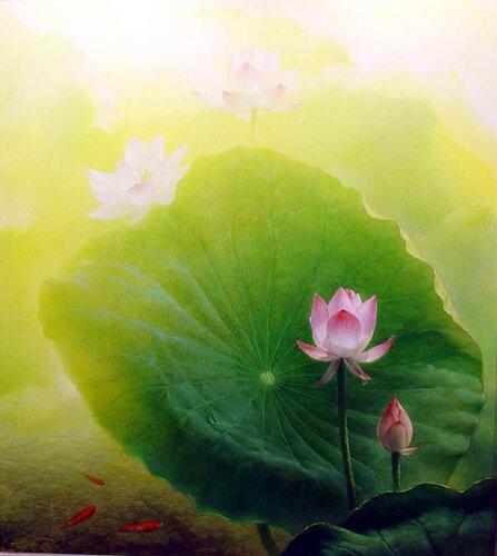 лотосы цветы