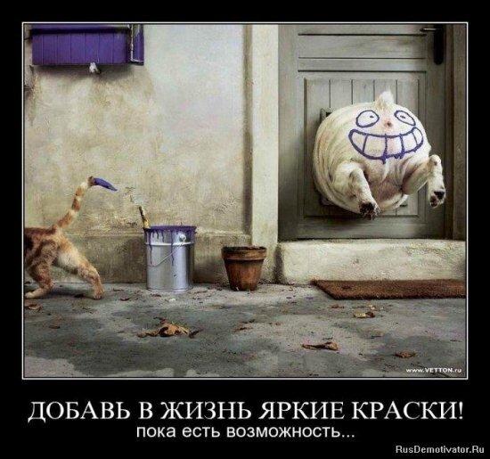 http://img-fotki.yandex.ru/get/5001/posmetnaia-el.c8/0_479af_ee5b16bb_XL.jpg
