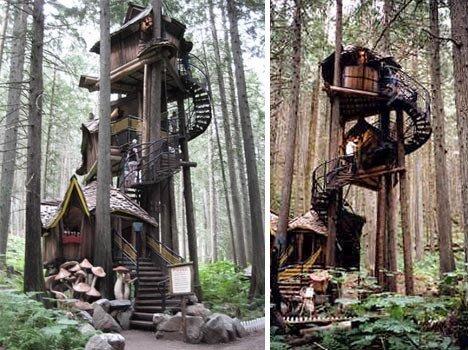 домик в лесу фото