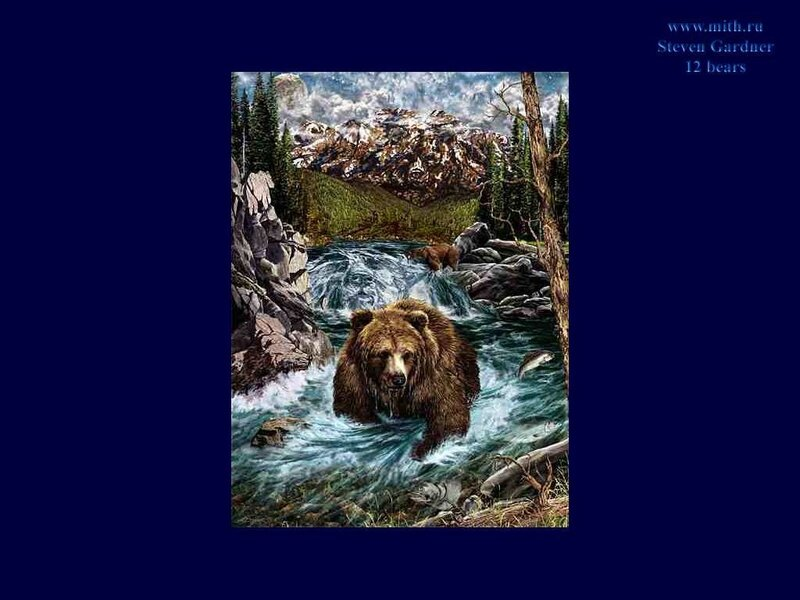 Считаем медведей