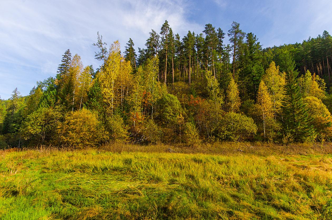 Сентябрь в Сибири