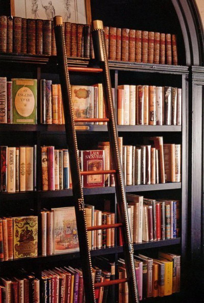 София альтерман хочет : своя библиотека.