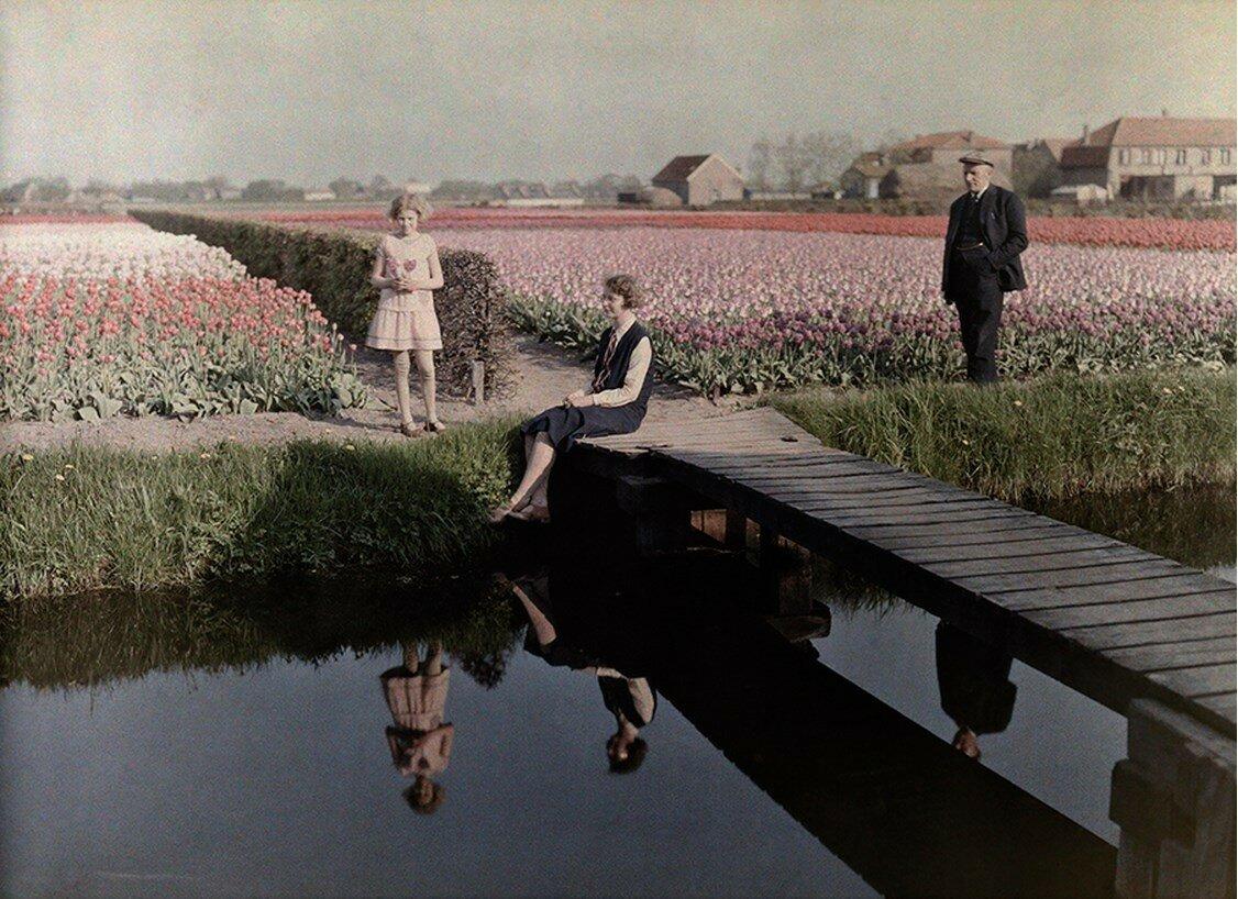 1931. Нидерланды. Местные жители отдыхают в полях тюльпанов вдоль канала в Гарлеме