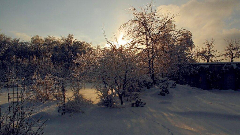 Зима,с.Остров,подворье,ледяной дождь