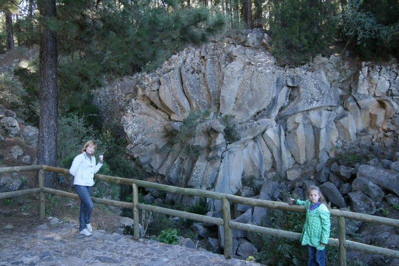 Каменный цветок острова Тенерифе