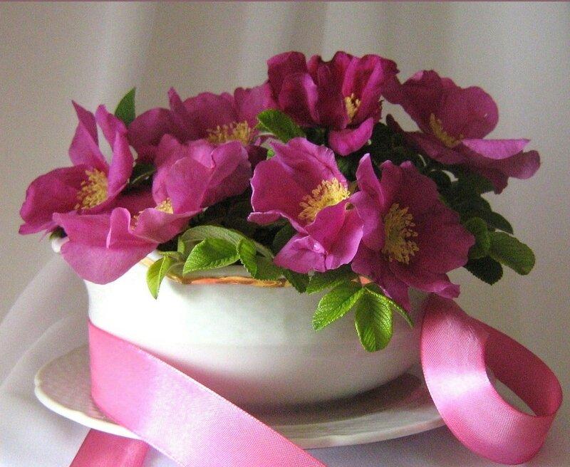 Цветы для юлии в день рождения картинки