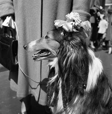 street photographer Vivian Maier