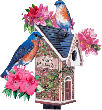 Birdhouse16_dhedey.png