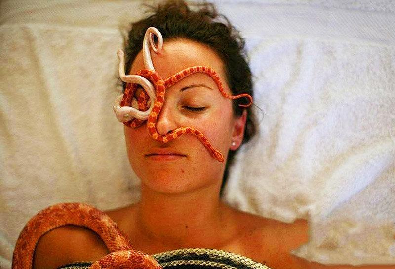 Массаж со змеями - необычный способ снятия стресса