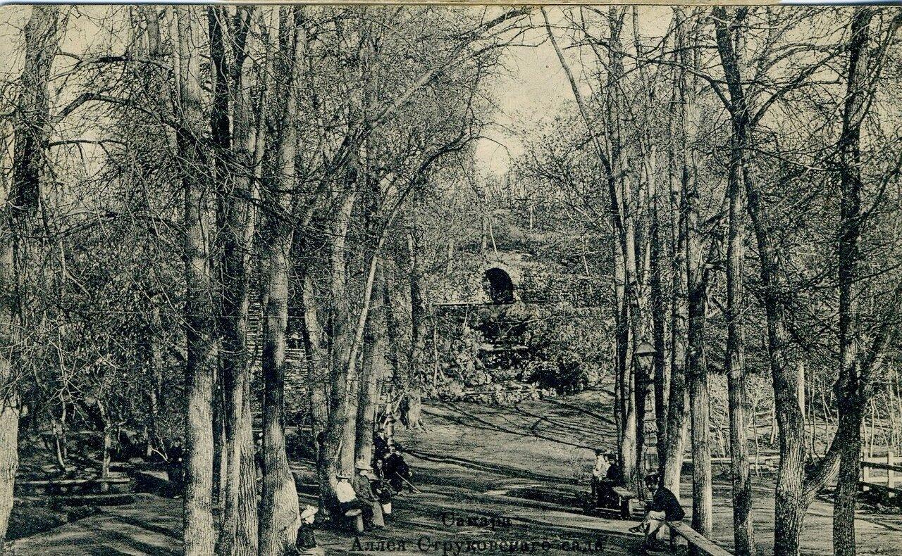 Аллея Струковского сада