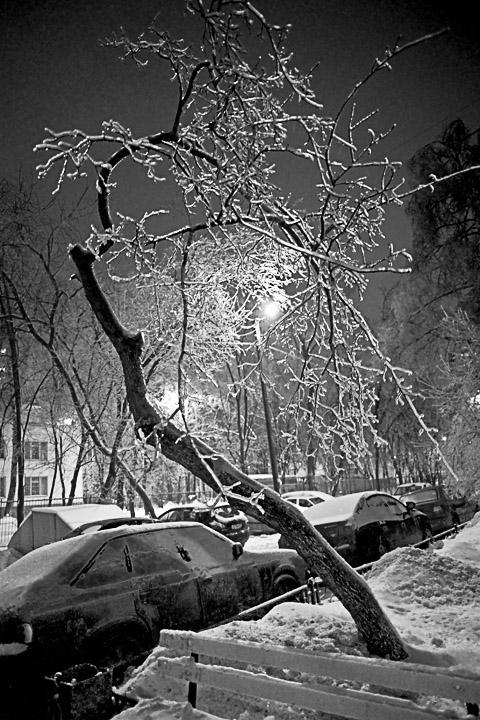 черно-белые фотографии. профессиональных фотографаов